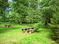 Picnic benches - geograph.org.uk - 560387.jpg