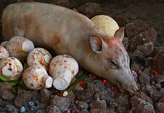 Earth oven - Samoan umu preparation with pig and taro on hot rocks above ground, later covered by leaves for cooking.