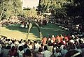 PikiWiki Israel 7474 Gan-Samuel - First Fruits Festival 1983.jpg