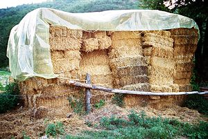 "Straw - Pile of ""small square"" straw bales, sheltered under a tarpaulin"