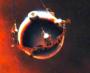 Pioneer Venus 2 Tochtersonde