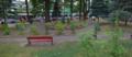 Plac Grunwaldzki Brzozów.png