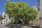 Place Christian Combettes, Frontignan, Hérault 01.jpg