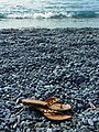 Plage de Marina d'Albu - Tongues.jpg
