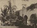 PlantsPanamaCaliforniaExpo1915.jpg