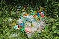 Plastic garbge in Bohol 2017.jpg