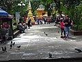 Plaza Scene - Coatepec - Veracruz - Mexico (16106040915).jpg