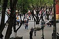 Plaza en San Cristobal - panoramio.jpg