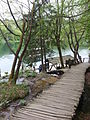 Plitvice lakes national park 34.jpg