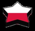 Pol-star-flag.png