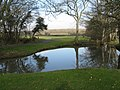Pond by the 1st tee - geograph.org.uk - 1700684.jpg