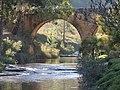 Ponte do rio dos papagaios - panoramio.jpg