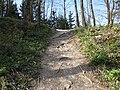 Pot na Smledniški grad - panoramio (2).jpg