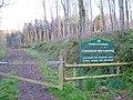Powderham New Plantation - geograph.org.uk - 159334.jpg