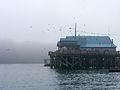 Prince William Sound Science Center.jpg