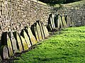 Priory Wall, Guisborough Church - geograph.org.uk - 148289.jpg