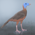 Protarchaeopteryx-swamp.png