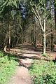 Public footpath to Bulby - geograph.org.uk - 412386.jpg