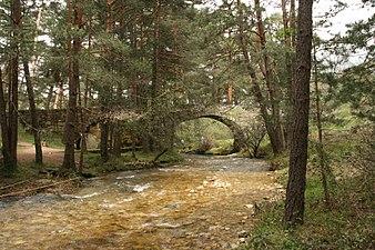 Puente de Navalacarreta (2 de mayo de 2015, Boca del Asno, Segovia) 04.JPG