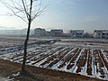 Pyongyang - Kaesong Hwy, North Hwanghae, North Korea - panoramio (4).jpg