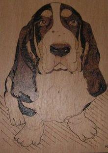 Pyrogravure Chien basset hound