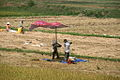 Quang Ngai farmers2.jpg