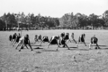 Queensland State Archives 2867 Physical education class at Nambour State Rural School 1946.png