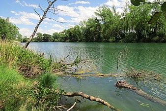 Río Ebro aguas arriba de Miranda de Ebro.jpg
