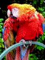 RGB 24bits palette sample image - 3-bit RGB.png