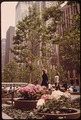 ROCKEFELLER CENTER-6TH AVENUE SIDE-A GREEN, COOL RESTING PLACE FOR PASSERSBY - NARA - 551644.tif