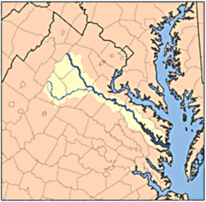 Rapidan River - Rapidan and Rappahannock Rivers. The Rappahannock is the highlighted river to the north, while the Rapidan is its southerly tributary.