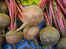 Red beet (Beta vulgaris L.).jpg