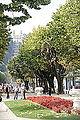 Rio Douro em Portugal DSC01376 (15532035838).jpg