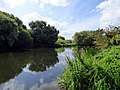 River Great Ouse, Bedford (27729822768).jpg