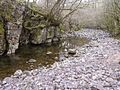 River Nedd Fechan - geograph.org.uk - 376992.jpg
