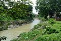 River Saraswati - Sankrail - Howrah - 2013-08-11 1326.JPG