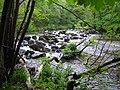 River Teign, Fingle Mill Head Weir - geograph.org.uk - 438314.jpg