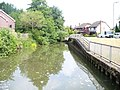 River Wey at Catteshall - geograph.org.uk - 1377175.jpg