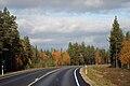 Road Lapland.jpg