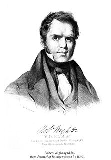 Robert Wight Scottish botanist (1796-1872)