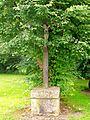 Roberval (60), croix de mission de Fosse, au centre du hameau.jpg