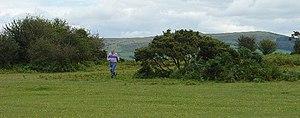 Roborough - Part of Roborough Down, with the main bulk of Dartmoor behind