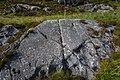 Rock carvings helleristninger Husevåg Husevågøy 001.jpg