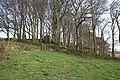 Rock outcrop near Sharpcliffe Lodge - geograph.org.uk - 402732.jpg