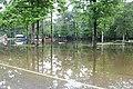 Roman Forest Flood Waters - 4-19-16 (26430915512).jpg