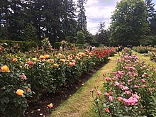 International Rose Test Garden Wikipedia