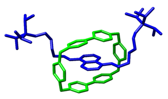 Fraser Stoddart - Crystal structure of a rotaxane with a cyclobis(paraquat-p-phenylene) macrocycle reported by Stoddart and coworkers in the Eur. J. Org. Chem. 1998, 2565–2571.