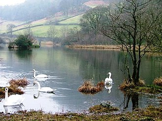 Rydal Water - Image: Rydal Water
