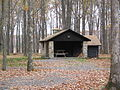 S.B. Elliott State park Cabin 5.jpg
