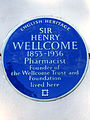 SIR HENRY WELLCOME 1853-1936 Pharmacist Founder of the Wellcome Trust and Foundation lived here (2).jpg